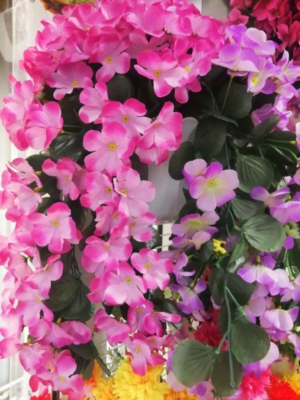Растение ампельное, длина 65см, цвета разные